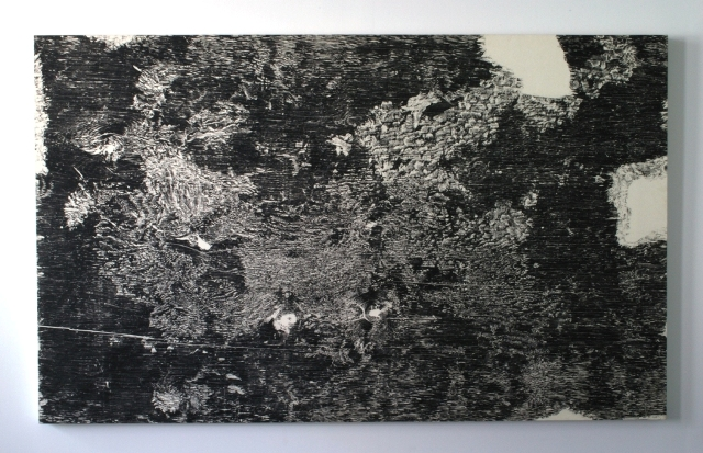 "Gnaw 8, 1999: relief print of porcupine gnawed plywood on panel, 48""(h)x 76""(w)"