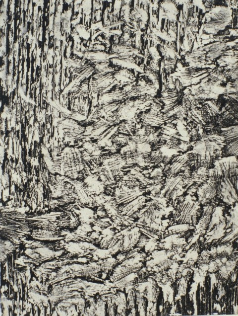 """Small Gnaw Variation 1, 1999: relief print of porcupine gnawed plywood on panel, 11""""(h)x 8.5""""(w)"""