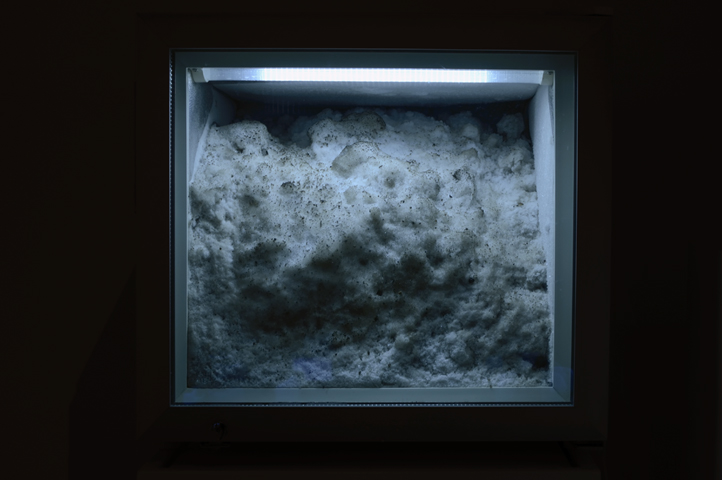 Snowbank, 2012: snowbank, display freezer
