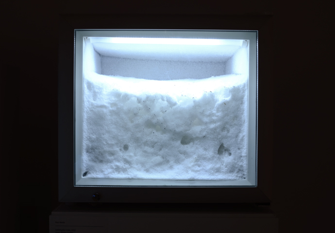 Sublimation Cube, 2012: snow, display freezer.