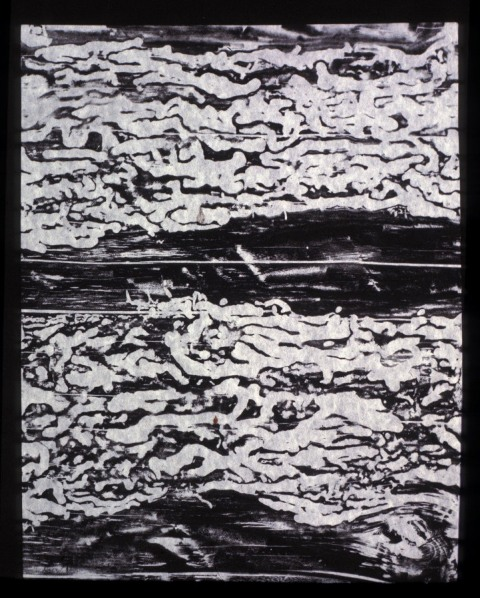 """Small Galleries, 1996: relief print of tree trunk etched by engraving beetles on panel, 11""""(h)x 8.5""""(w)"""