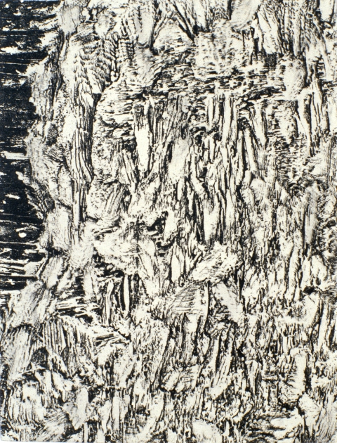 "Small Gnaw Variation 2, 1996- 1999: relief print of porcupine gnawed plywood on panel, 11""(h)x 8.5""(w)"